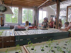 Airy Knob Farm Hydroponics Concept Lab